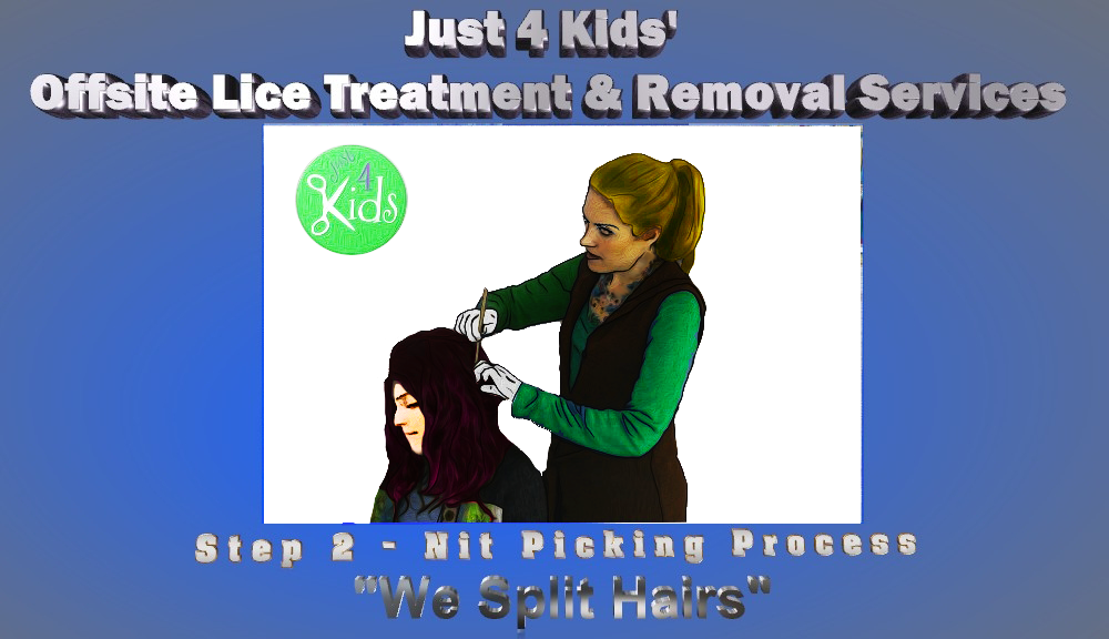 Just 4 Kids Salon Offsite Lice Treatment and Removal Services - Step 2 - Nit Picking Process - We Split Hairs