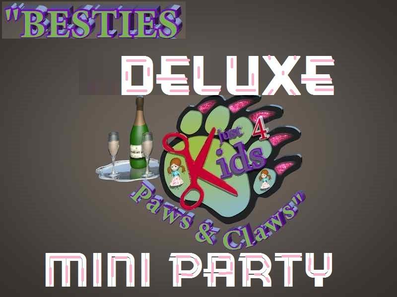 Kids Birthday Party Ideas - Besties Deluxe Mini Party
