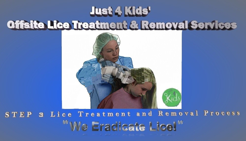 Lice Prevention Tips - Step 3 - We Eradicate Lice